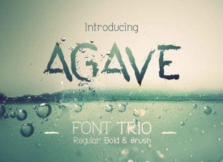 Agave Font Trio Font