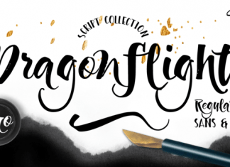 Dragonflight Pro Font