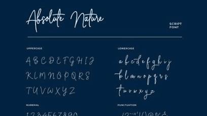 Absolute Nature Handwritten Script Font