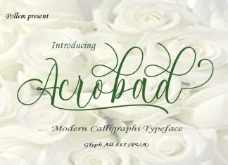 Acrobad Font