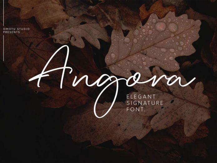 Angora - Elegant Signature Font