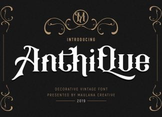 Anthique - Vintage Typeface