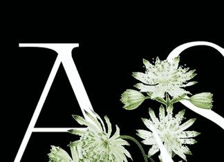 Astrance Font