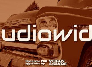 Audiowide Pro Font
