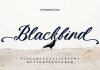 Blackbird Font
