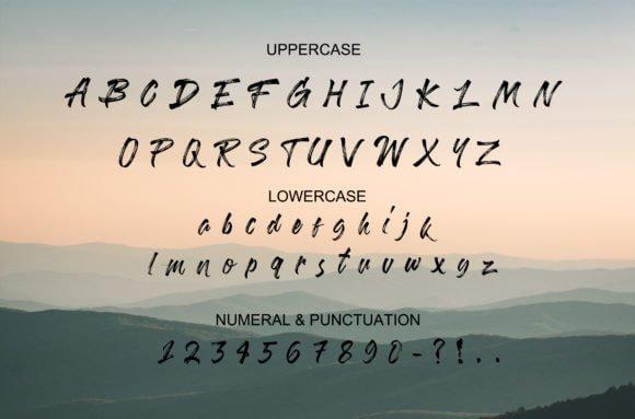 Bohemian Wild Script Font