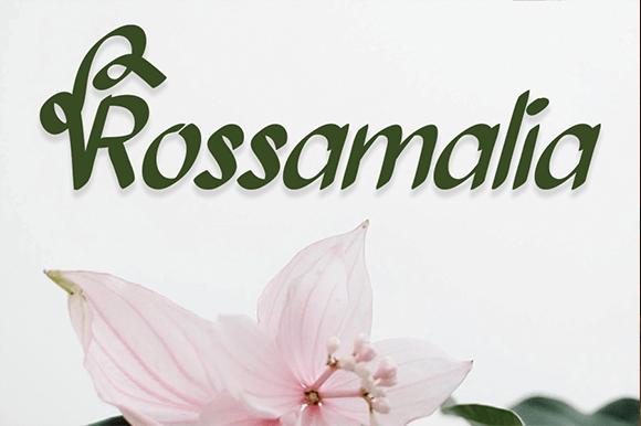 Bollanita Font