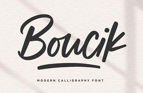Boucik Script Font YH