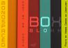 Box Blokk Font