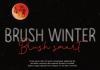 Brush Winter Font