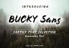 Bucky Font