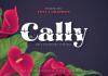 Cally Font