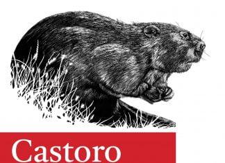 Castoro font