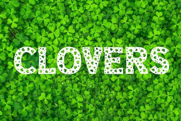 Clover Love Font