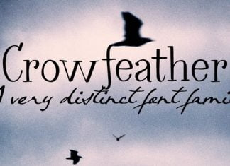 Crow feather Font