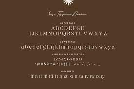 Eiosaka Stencil Serif Font