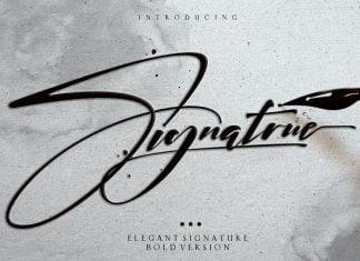 Elegant Bold Signature Font