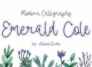 Emerald Cole Modern Calligraphy
