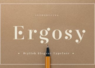 Ergosy Font