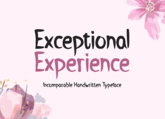 Exceptional Experience Font