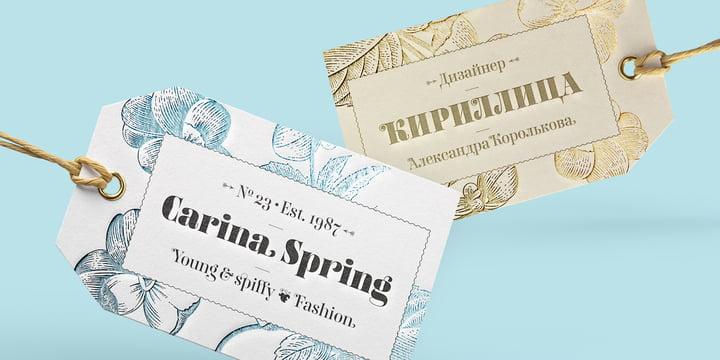 FF Carina Font Family Font