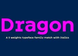 FY Dragon family Font