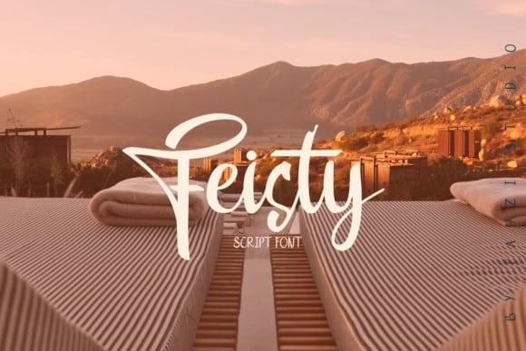 Feisty Font
