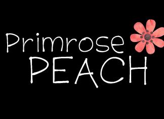 K26 Primrose Peach Font