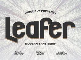 Leafer Modern Sans Serif Font