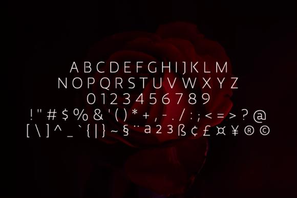 Malibo Thin Font