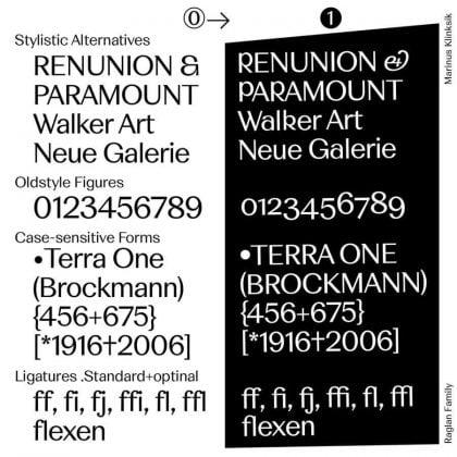 Raglan Sans + Serif Bundle