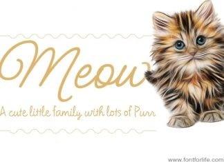 Meow Script Font