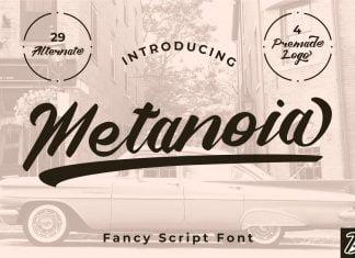 Metanoia - Fancy Script Font