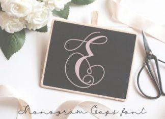 Monogram Swans Font