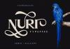 Nuri Font Family