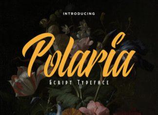 Polaria Font
