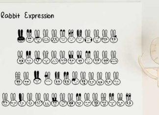 Rabbit Expression Font