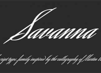 Savanna Script Font