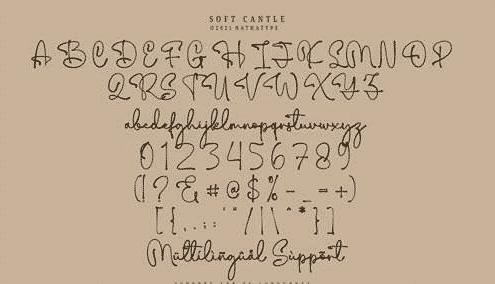 Soft Candle - Signature Script Font