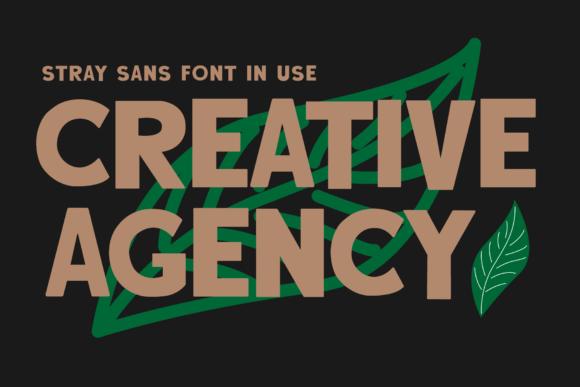 Stray Sans Font