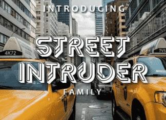 Street intruder