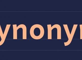 Synonym Font