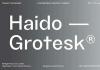 TG Haido Grotesk Font Family