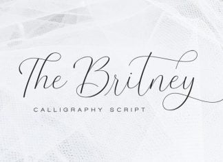 The Britney - Calligraphy Script