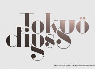Tokyo Digs Font Serif