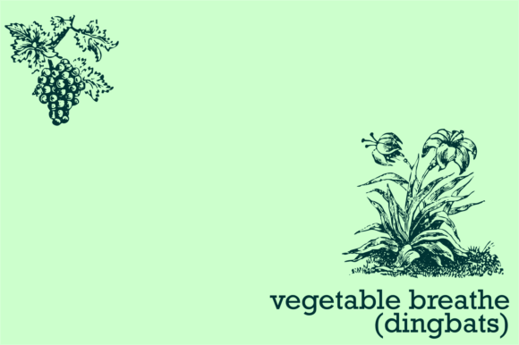 Vegetable Breathe Font