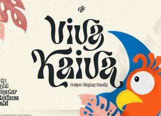 Viva Kaiva - Funky Retro Family