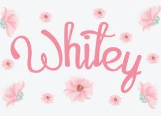 Whitey Script Font