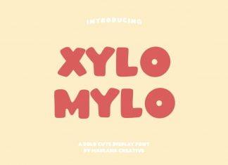 Xylomylo Bold Display Font