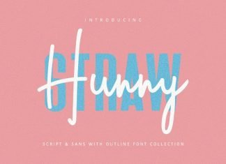 Hunny Straw Font Collection Font